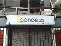 bonobos-bar-vina-del-mar